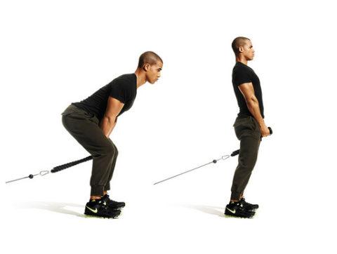 Тяга нижнего блока между ног: как правильно делать и какие мышцы работают