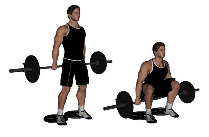 Программа тренировок для приседаний со штангой за спиной