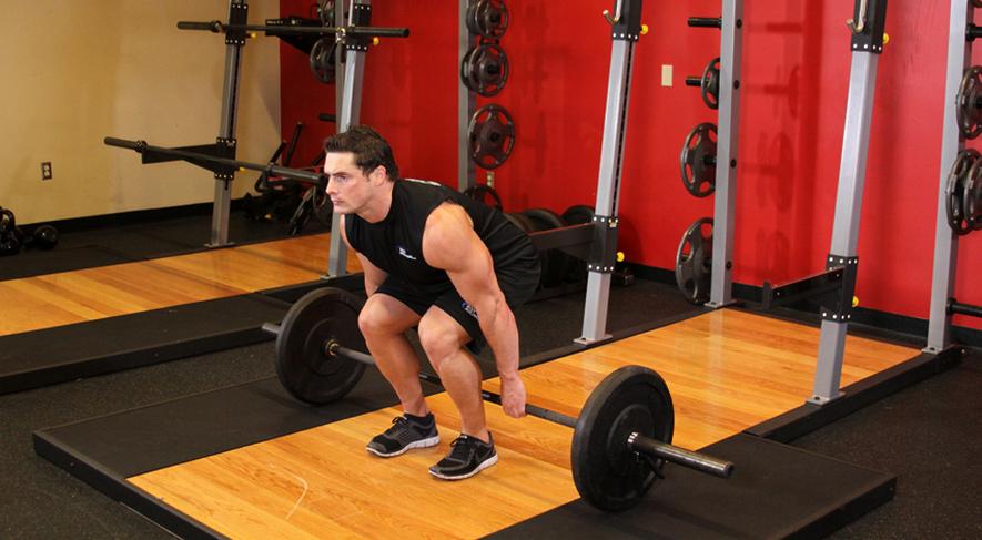 Какие мышцы развивают приседания со штангой за спиной