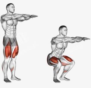 Работающие мышцы при приседаниях без веса