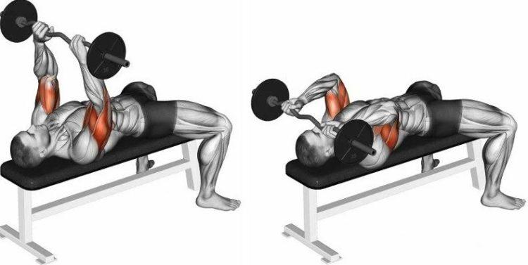 Какие мышцы задействованы во французском жиме лежа со штангой