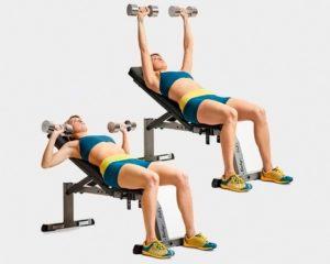 Какие мышцы задействованы в жиме гантелей на наклонной скамье