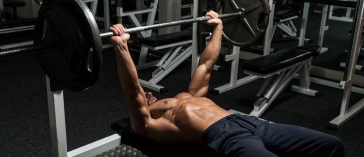 Какие мышцы тренируются в жиме штанги лежа от груди