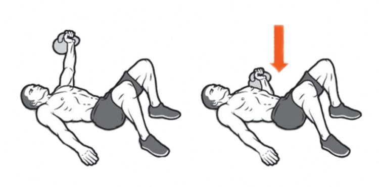 Мышцы задействованные в жиме лежа с гирей