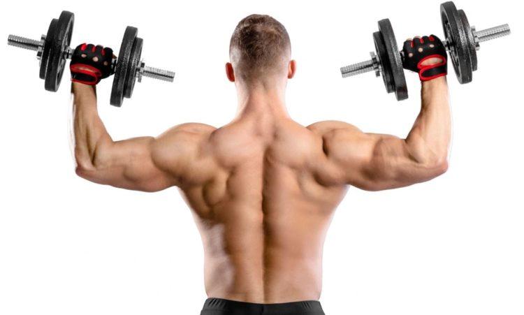 Эффективность упражнений на плечи с гантелями для мужчин
