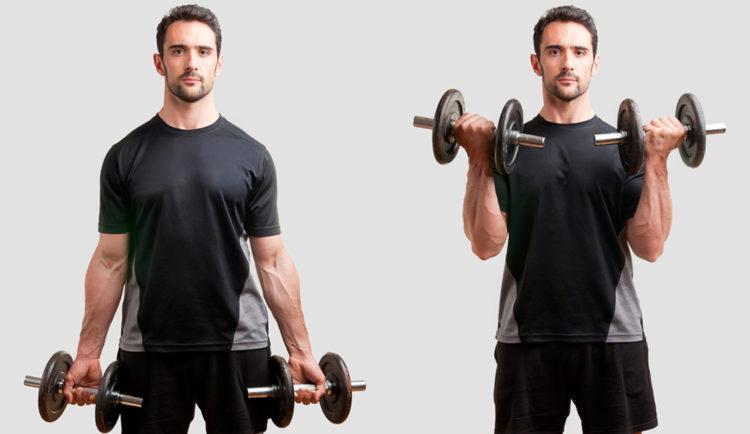Упражнения на плечи с гантелями для мужчин